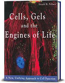 Book cover for Cells, Gels and the Engines of Life