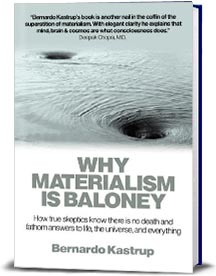 Book cover for Why Materialism is Baloney